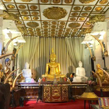 Coverfoto gouden box tempel van de tand