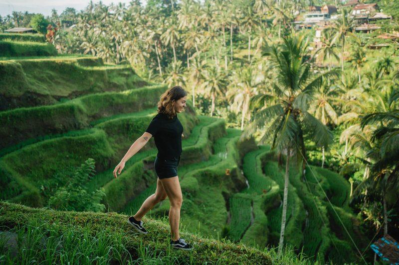 Dani rijstvelden Bali